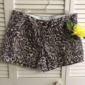 LOFT Ladies Shorts